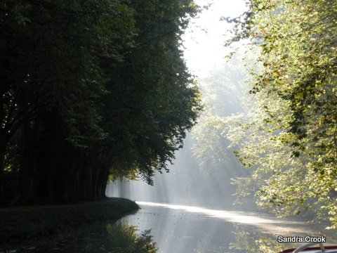 Canal Lateral a la Garonne, heading for Agen one autumn morning.