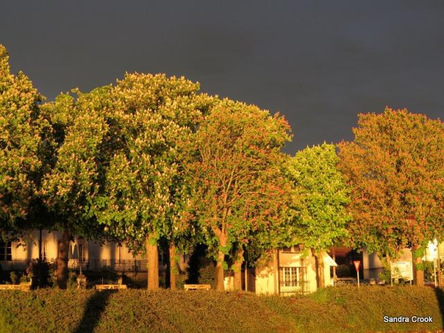 seurre storm 1